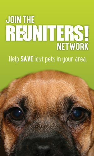 Join the Reuniters Lost Pet Network