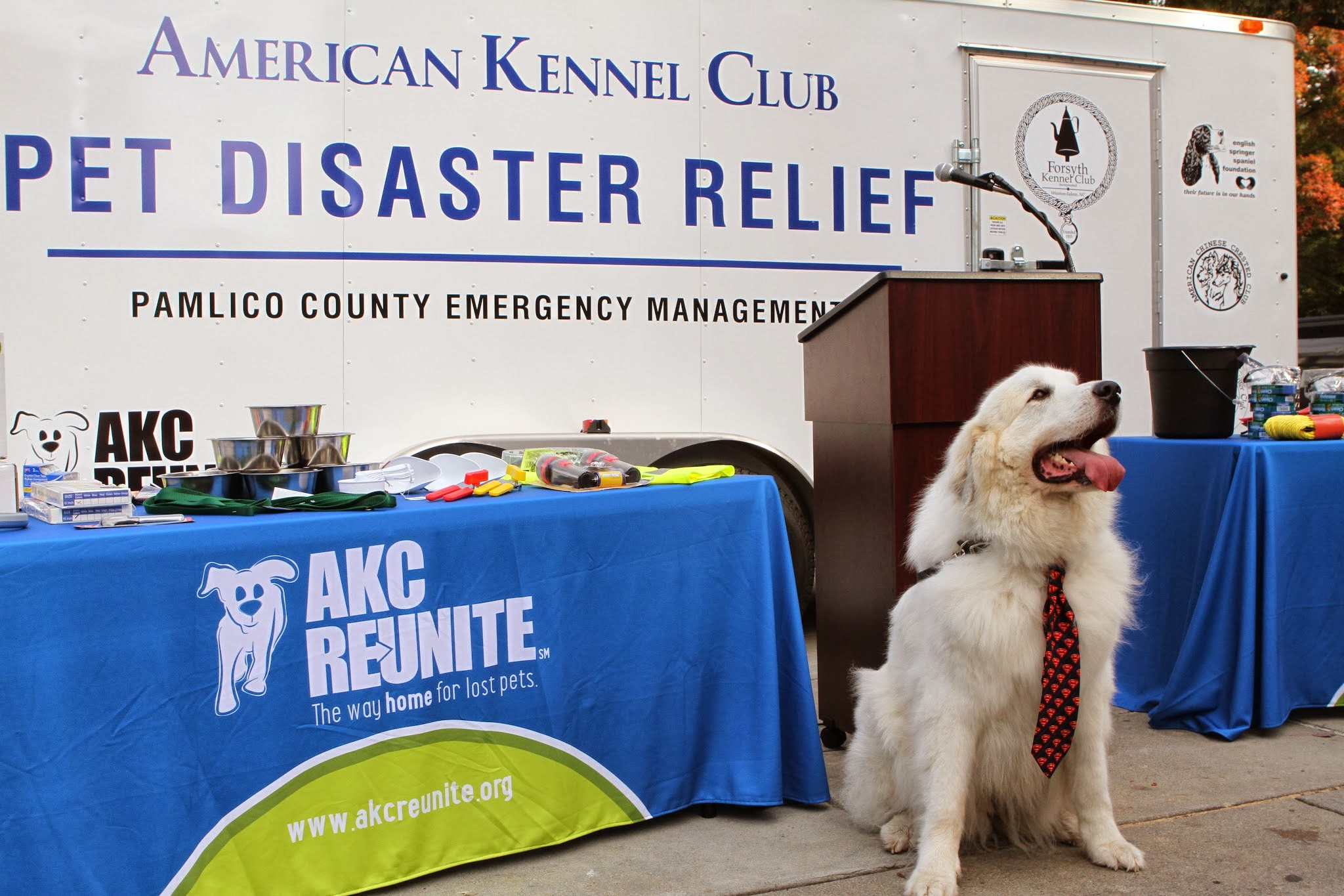 AKC Pet Disaster Relief Rolls Out Help for Pets Across the Country