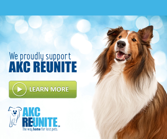 AKC Reunite Pet Microchips