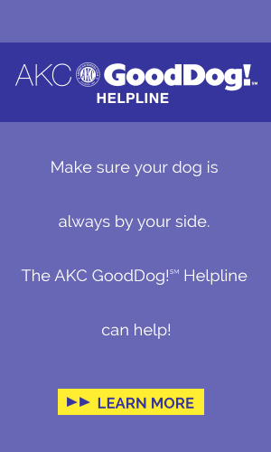 Good Dog Helpline