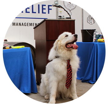 Pitch AKC Pet Disaster to Local Emergency Management