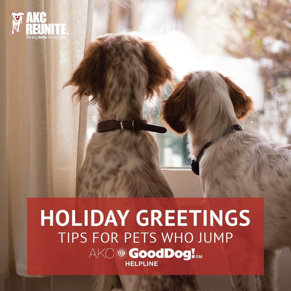 holiday-greetings-blog